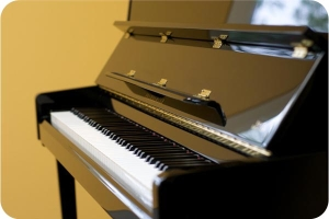 Piano Teacher, Instructor - Music Notes Academy East Brunswick NJ
